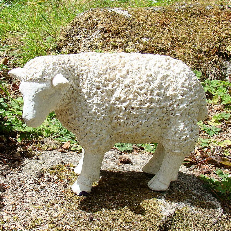 Lamb White side facing