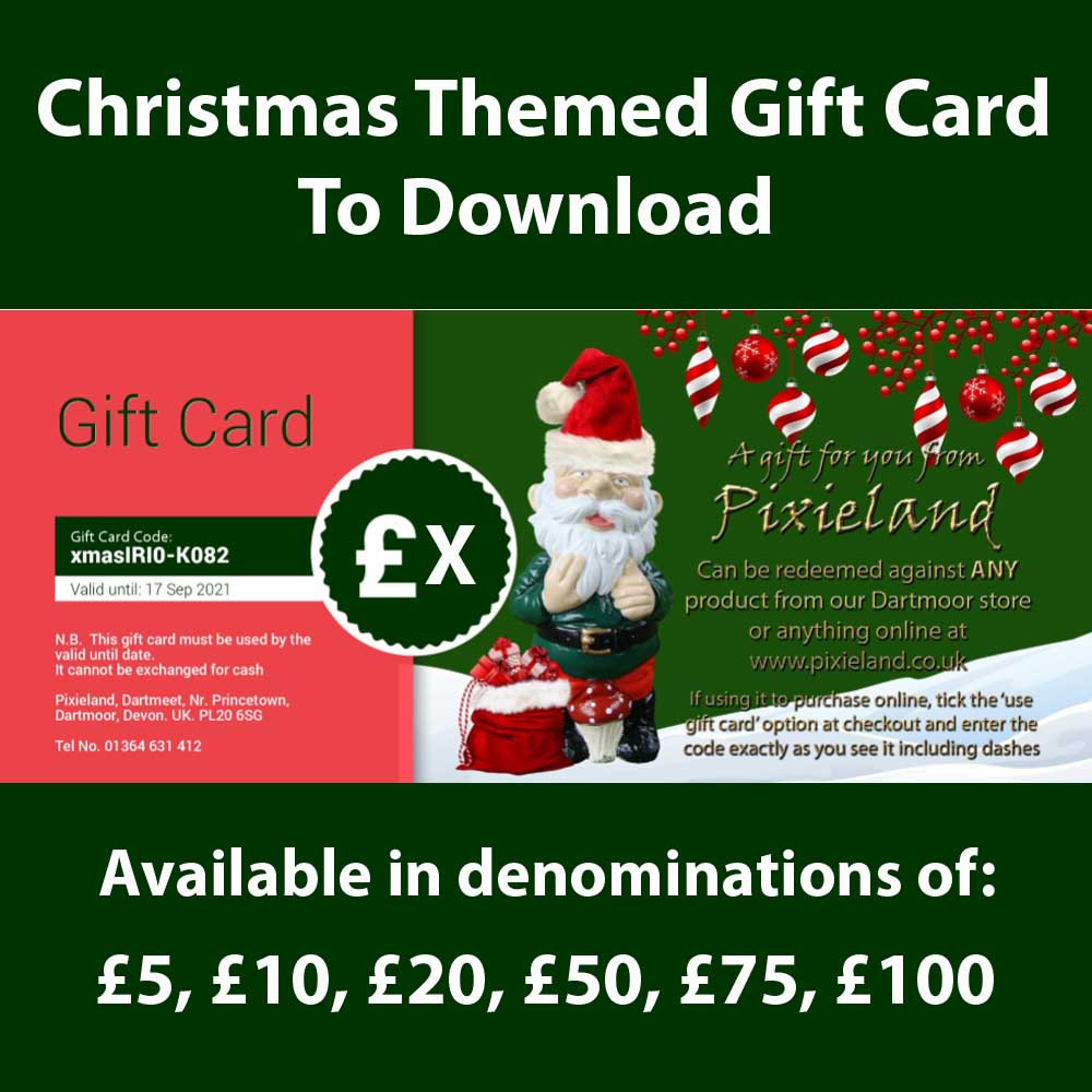 Christmas themed gift card