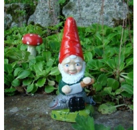 Garden gnome Dylan by Pixieland