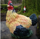 Coloured Hen