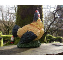 Coloured Hen Back