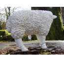 White Resin Sheep - Looking to the side