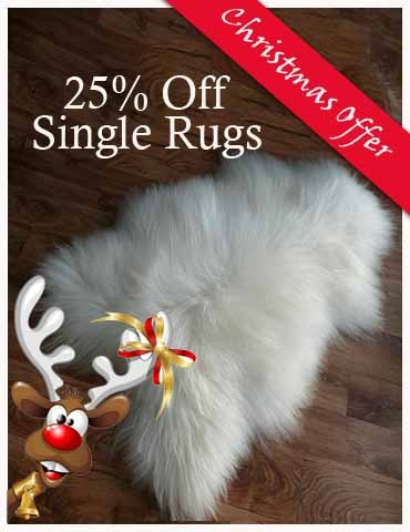 Christmas Offer Rugs