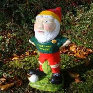 Pixie Rovers Gnome